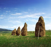 The field. A picture of haystacks standing in the field Stock Photos