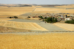 Field. S in Spain with village stock photography