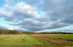 Field. A field with fine clouds Royalty Free Stock Photos