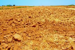 Field. Freshly Plowed Field In Spring Ready For Cultivation Stock Image