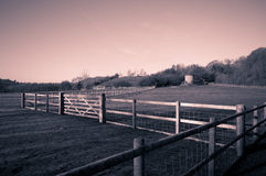Field. A field with fences around it Royalty Free Stock Images