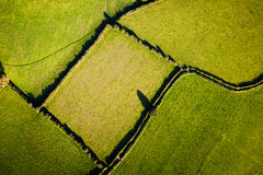 Field from above. Aerial view showing geometric lines and shapes made by field boundaries in British countryside Royalty Free Stock Images