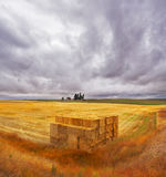 Field and accurately combined stacks Royalty Free Stock Photography