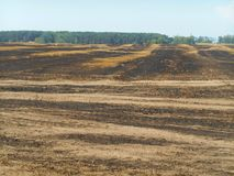 Field affected by fire Royalty Free Stock Images