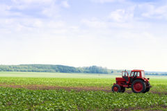 In the field of agricultural machinery available. Stock Photography