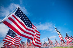 Field of American Flags. A field of hundreds of American flags. Commemorating veteran's day, memorial day or 9/11 royalty free stock photography