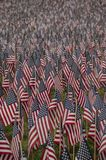 Field of American Flags 3 - vertical stock photo