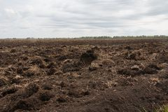Field, arable land is prepared for sowing crops. In the background, far away forest, tractors plow Royalty Free Stock Photo
