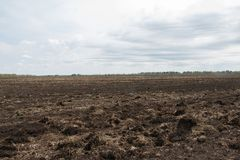 Field, arable land is prepared for sowing crops. In the background, far away forest, tractors plow Stock Photo