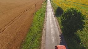 Field and asphalt road. stock video