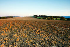 Field in autumn. View of shiny autumn field in month September Stock Photography