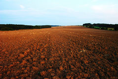 Field in autumn. View of broke field in month September after sunset Stock Photo