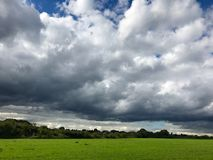 Autumn grass and sky Royalty Free Stock Photography