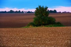 Field in autumn Royalty Free Stock Photography