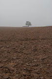 Field after autumnal plowing Stock Photography