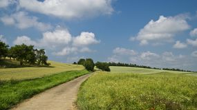 Field, Away, Summer, Sky, Clouds Royalty Free Stock Photography