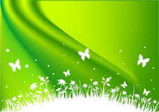 Field Background - Green. A green field background with flowers, butterflies and grasses Stock Photo