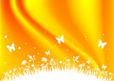 Field Background - Orange. An orange field background with flowers, butterflies and grasses Stock Photography