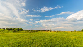 Field on a background of the sky Royalty Free Stock Images