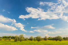 Field on a background of the sky Royalty Free Stock Photography