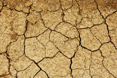 Field of baked earth Royalty Free Stock Images