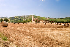 field with bales of hay in Italy Royalty Free Stock Photo