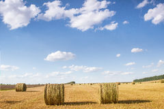 Field with bales of straw Stock Photography