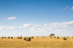 Field with bales of straw Royalty Free Stock Images
