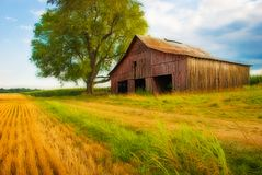 Field & Barn Royalty Free Stock Images