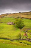 Field Barn in Upper Swaledale at Keld Stock Photos