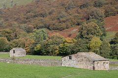 Field barns, Muker, Swaledale, Yorkshire Dales royalty free stock photography