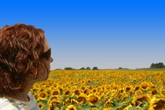 Field of Beauty Stock Photography