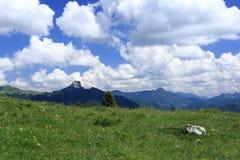 field berg Arkivbild