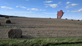 Field with bison monument in Baranovichi district. In Belarus royalty free stock photography