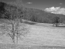 Field black and white stock images