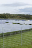 Field with blue siliciom solar cells alternative energy. To collect sun energy stock photo