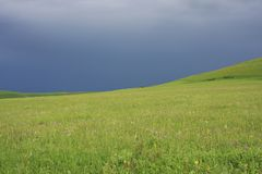 Field with blue sky Stock Image