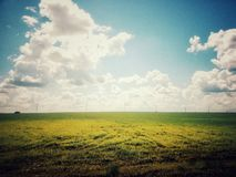 Field on blue sky background. Spring green field on blue sky background stock photo