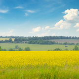 Field and blue sky Royalty Free Stock Photos