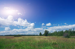 Field. Blue sky white cloud. Royalty Free Stock Photos