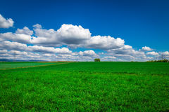 Field Bright Clouds and Sky Landscape Nature stock photos