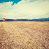 Field Stock Image