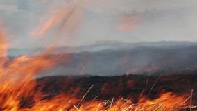 Field burning stock video footage