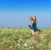 The field  of chamomiles and happy young woman Royalty Free Stock Photos