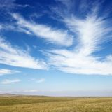 Field with cirrus clouds. Sky scene of golden field and wispy cirrus clouds stock images