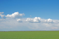 Field and clouds Royalty Free Stock Photos