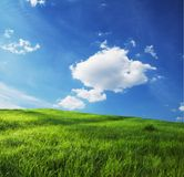 Field and clouds Royalty Free Stock Images