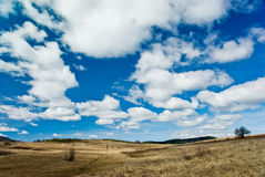 Field and Clouds. Early spring Stock Images