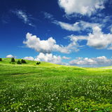 Field an clouds Royalty Free Stock Photography