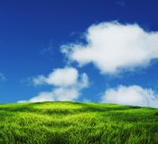 Field and clouds Stock Photography